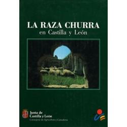 LA RAZA CHURRA EN CASTILLA...