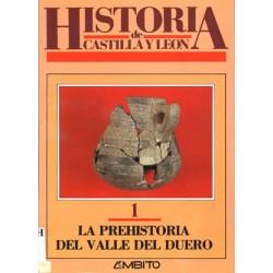 HISTORIA DE CASTILLA Y LEÓN.
